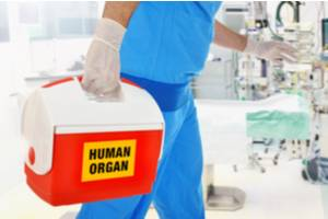 Organ Donation Questions